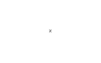 Villa Fenomen
